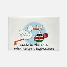 Stork Baby Kenya USA Rectangle Magnet