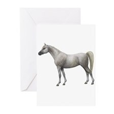 Cool Arab horse Greeting Cards (Pk of 10)