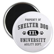 Property of Shelter Dog Univ. Magnet