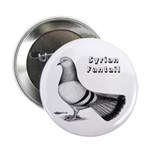 Syrian Fantail Pigeon Button