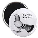Syrian Fantail Pigeon Magnet