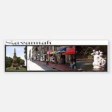 """Savannah"" 3 photo collage Bumper Bumper Bumper Sticker"