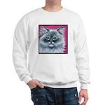 Ragdoll Cat Sweatshirt