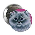 Ragdoll Cat 2.25