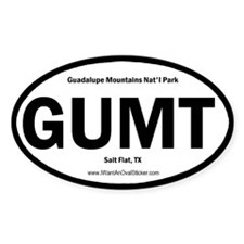 Guadalupe Mountains Oval Decal