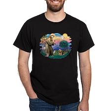 St Francis #2 / Norwich T. T-Shirt