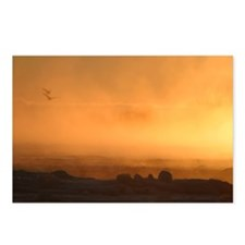 Dawn Postcards (Package of 8)