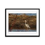 Blue Heron Framed Panel Print