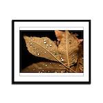 Autumn Leaf Framed Panel Print