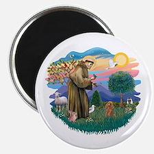 St. Fran #2/ Apricot Poodle (min) Magnet