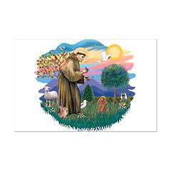 St. Fran #2/ Apricot Poodle (min) Posters