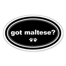 Got Maltese? Oval Decal