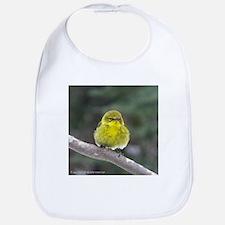 Spring Birds Bib