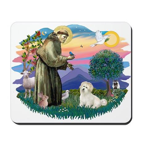 St Francis #2/ Coton De Tulear Mousepad