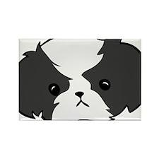 Bobble Shih Tzu Rectangle Magnet (10 pack)