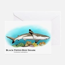 Black-Tipped Reef Shark Greeting Card