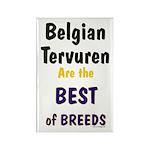 Belgian Tervuren Best of Breeds Rectangle Magnet (