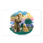 St Francis #2/ Wheaten #2 Postcards (Package of 8)