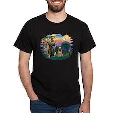 St Francis #2/ Briard (f) T-Shirt