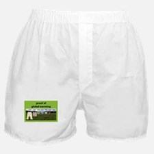 Cute Global warming Boxer Shorts