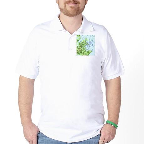 ADQ Airspace Chart Golf Shirt