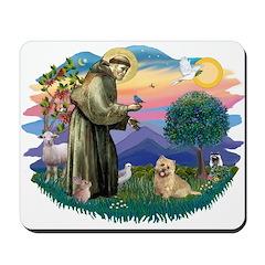 St Francis #2/ Cairn Ter Mousepad