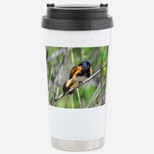 American Redstart Stainless Steel Travel Mug