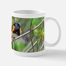 American Redstart Mug