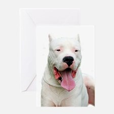 Cute Dogo argentino Greeting Card