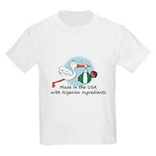 Stork Baby Nigeria USA T-Shirt