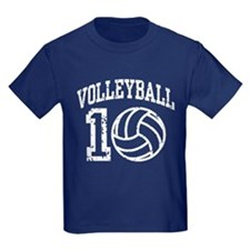 Volleyball 2010 T