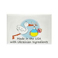Stork Baby Ukraine USA Rectangle Magnet