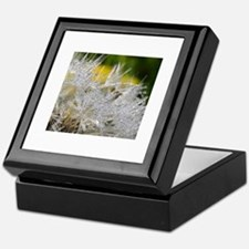Cute Beautiful dewsdrops on dandelion macro photograph Keepsake Box