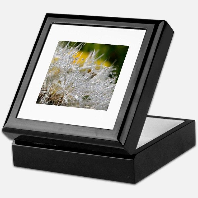 Cute Beautiful dewsdrops on dandelion macro photograph Keepsake Box