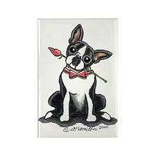 Boston Terrier Sweetheart Rectangle Magnet (10 pac
