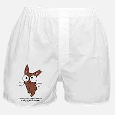 Chocolate Bunny Shrink Boxer Shorts