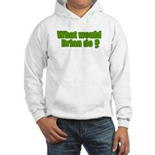 Would Brian Do Irish Rugby Humour Jumper Hoody