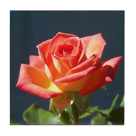 Peace rose Tile Coaster