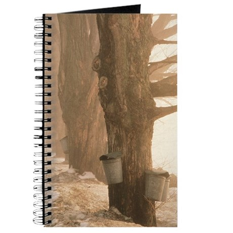 Sap Buckets Journal