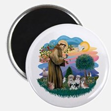 St Francis #2/ Shih Tzus (4) Magnet