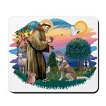 St Francis #2/ S Husky #2 Mousepad
