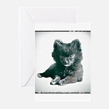 Adorable Black Pomeranian Puppy Greeting Cards (Pk