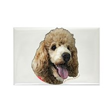 Standard Poodle Rectangle Magnet