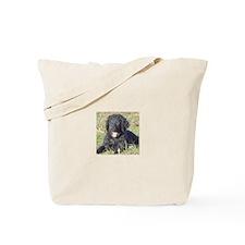 Cute Curly coated retriever Tote Bag