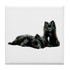 Black Pomeranian Puppy Tile Coaster