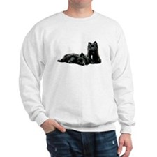 Black Pomeranian Puppy Sweatshirt