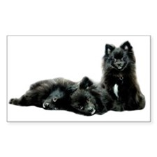 Black Pomeranian Puppy Decal