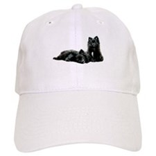 Black Pomeranian Puppy Baseball Cap