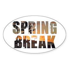 Cute Spring break 2011 Decal