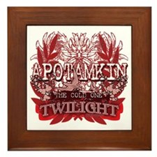Apotamkin Red Framed Tile